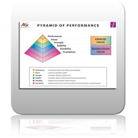 ICE Chart 1 - Pyramid of Performance