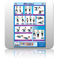 Wall Chart for BOSU - A2